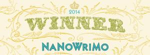Winner-2014-Web-Banner-300x111.jpg